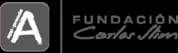 funacion-carlos-slim